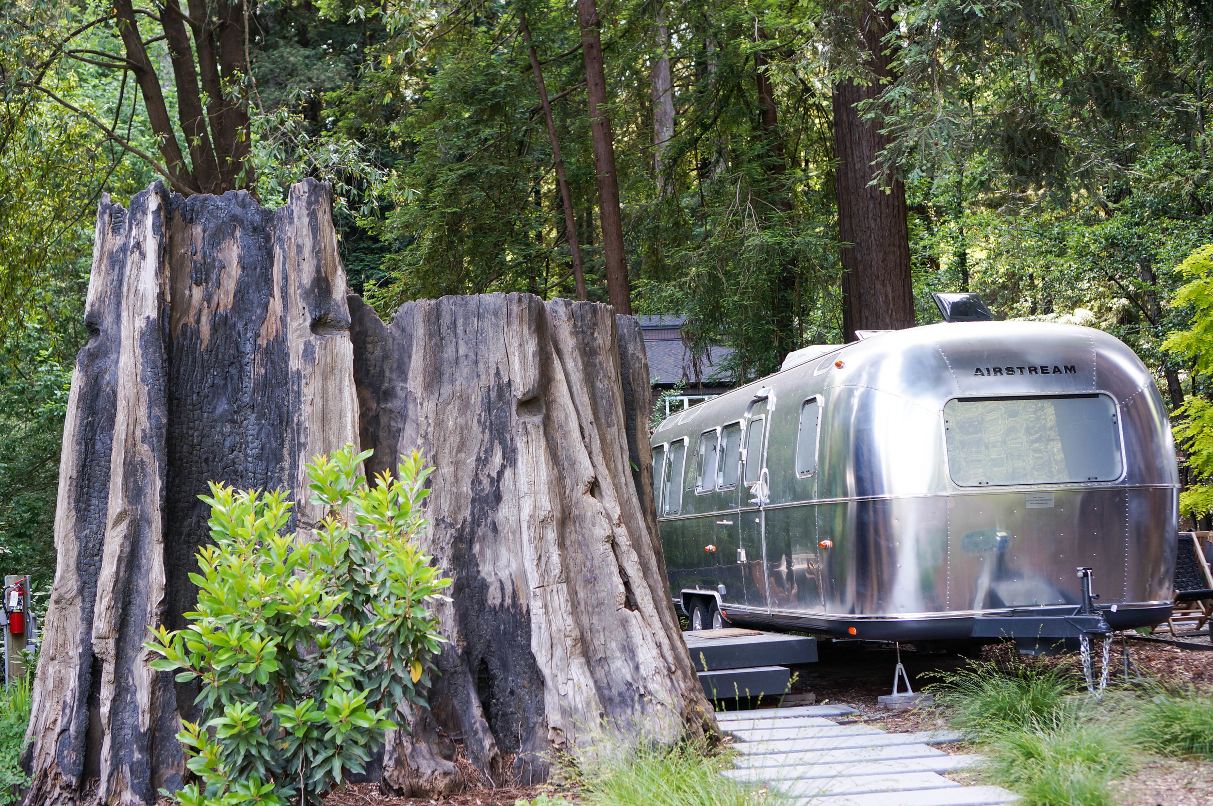 Autocamp Russian River is located at 14120 Old Cazadero Road in Guerneville, CA.