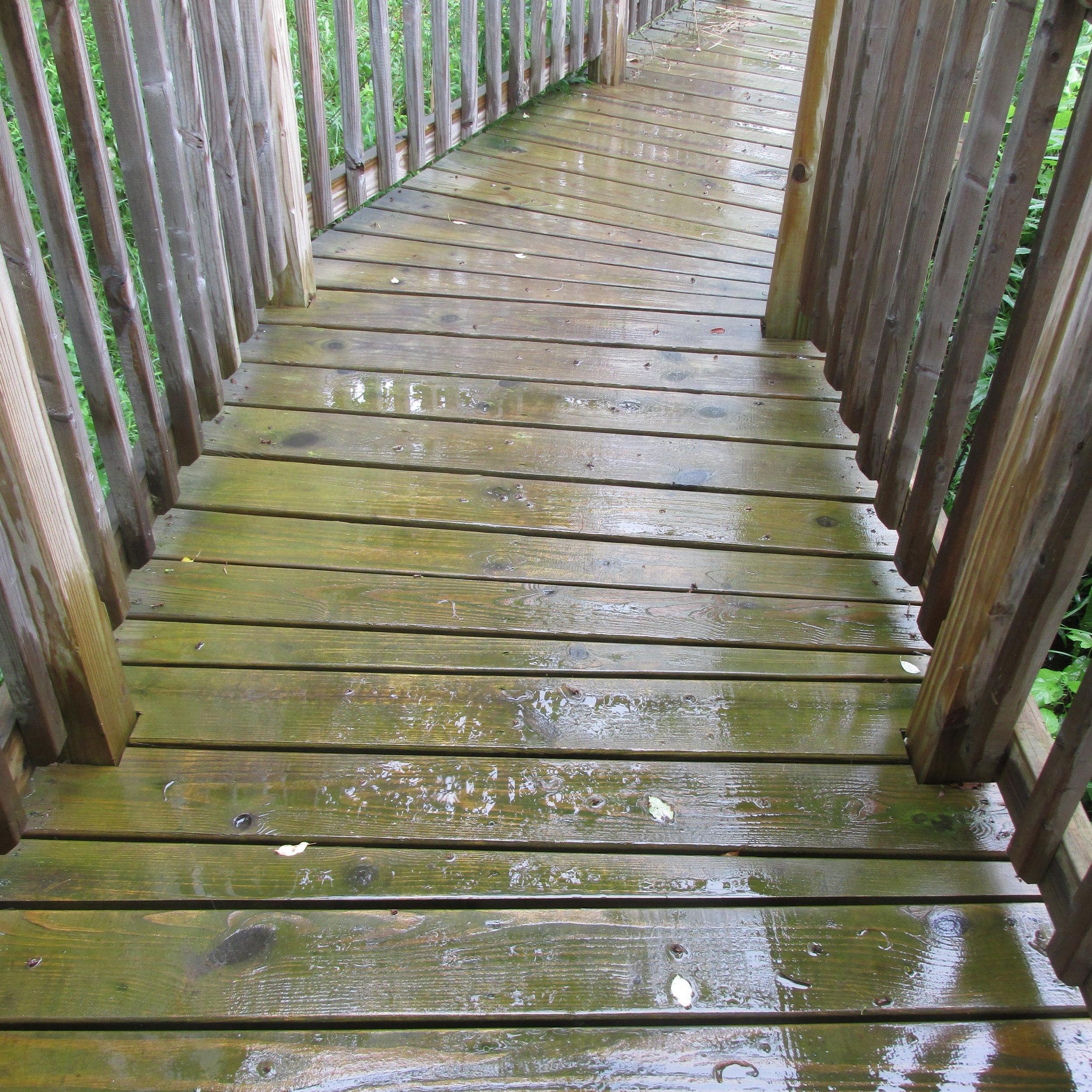 we call it the bridge, it's a raised walkway to the side door.  above the door:
