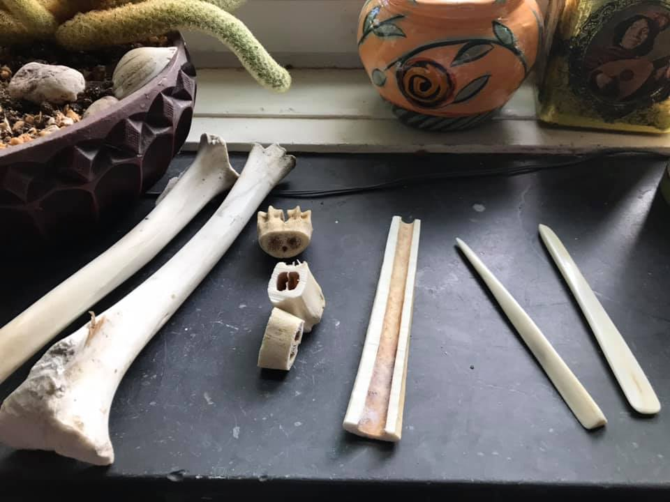 melissa's windowsill with the bones