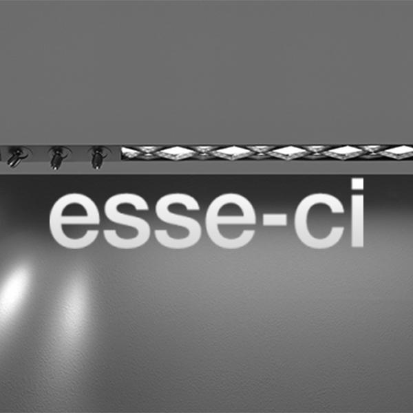 ESSE-CI -