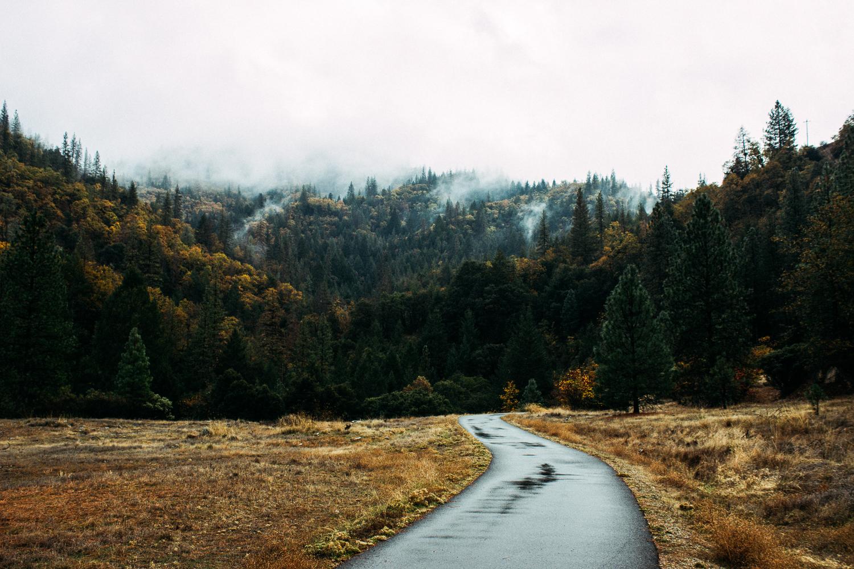 Landscape Website-15.jpg