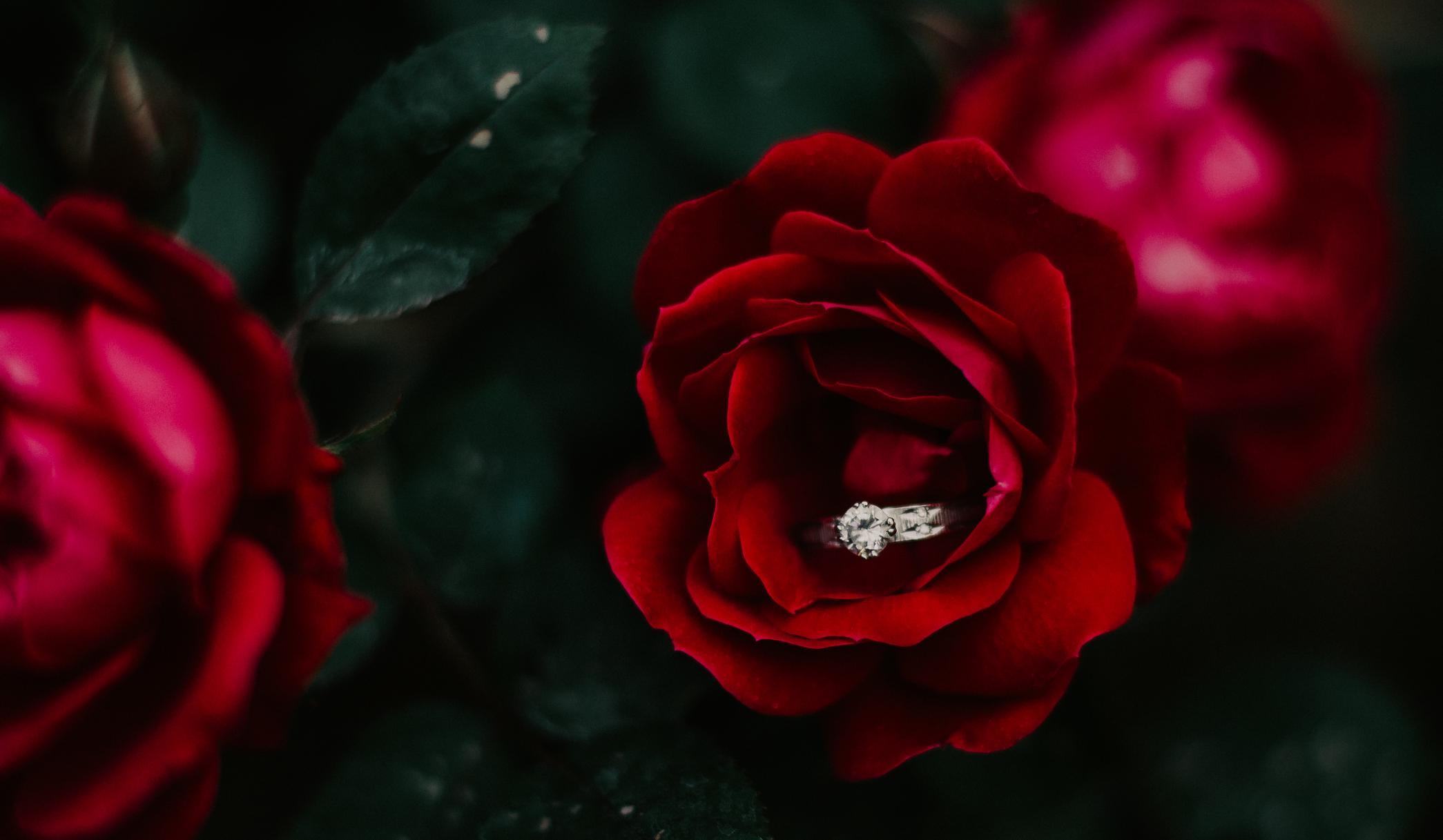 wedding-ring-photography.jpg.