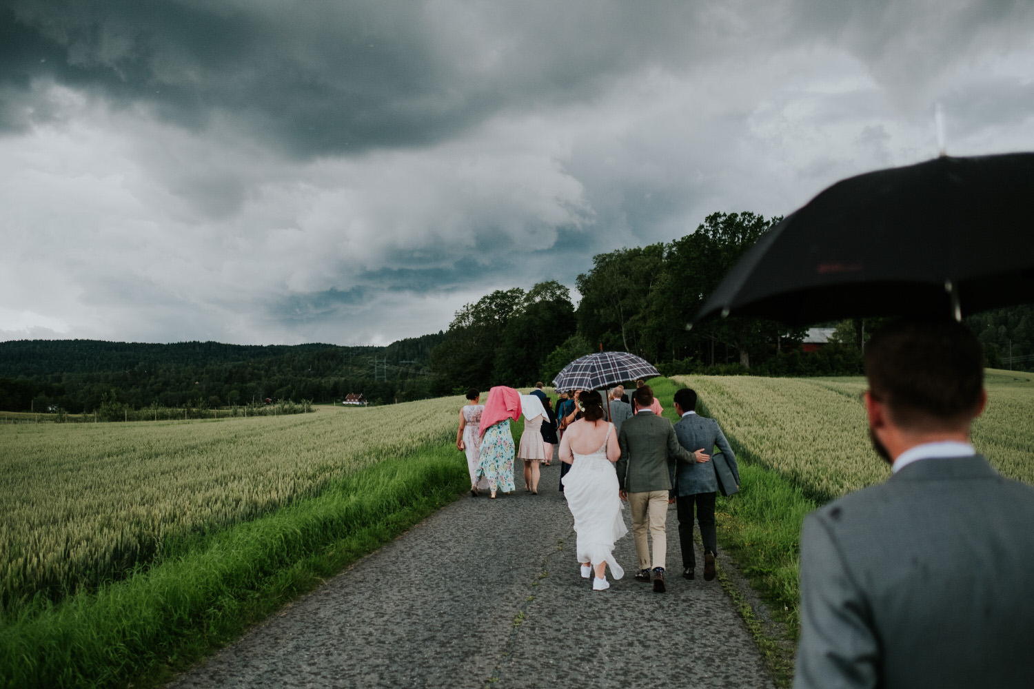 Apple orchard wedding in Oslo