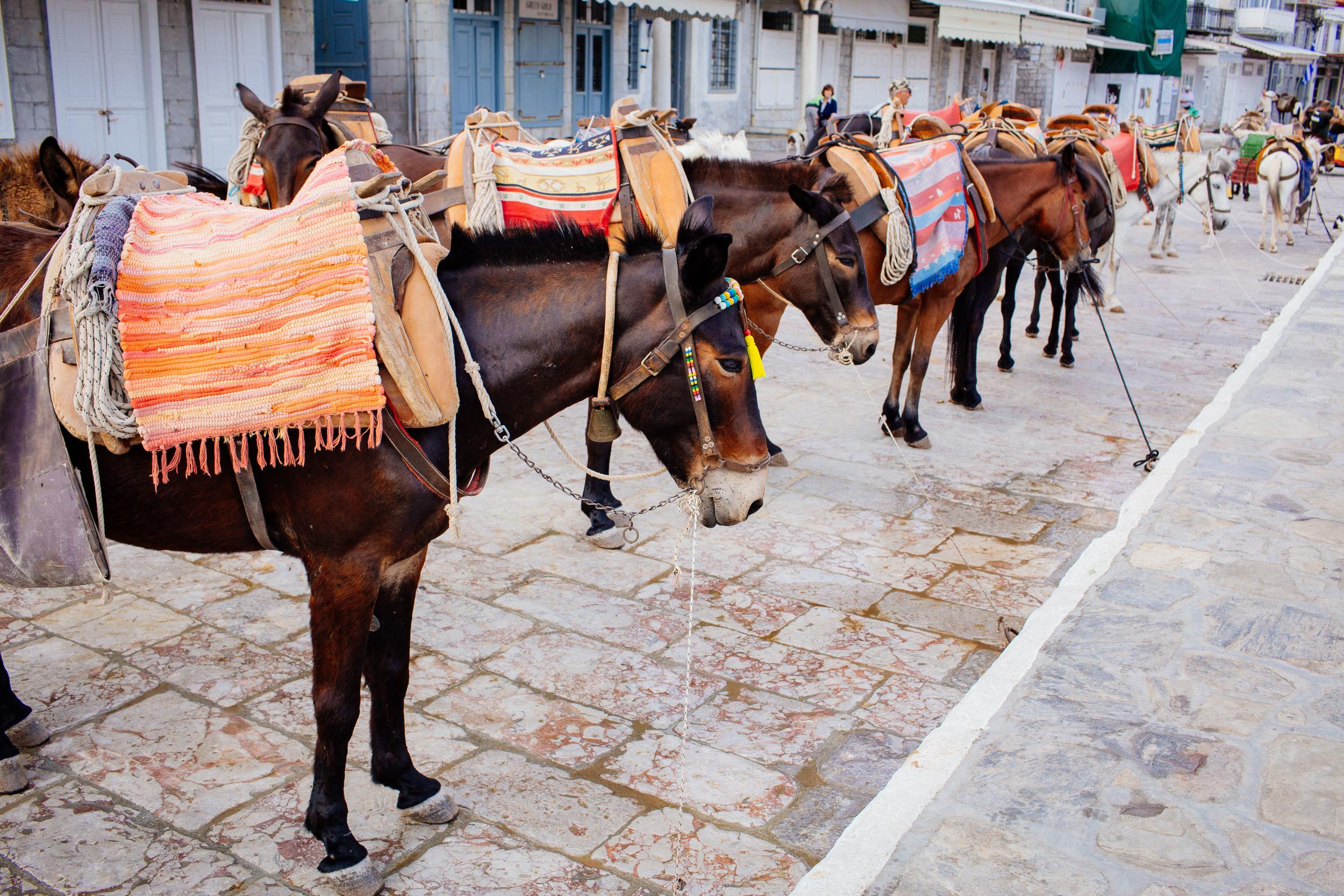 Greece_062015_emb-93.jpg
