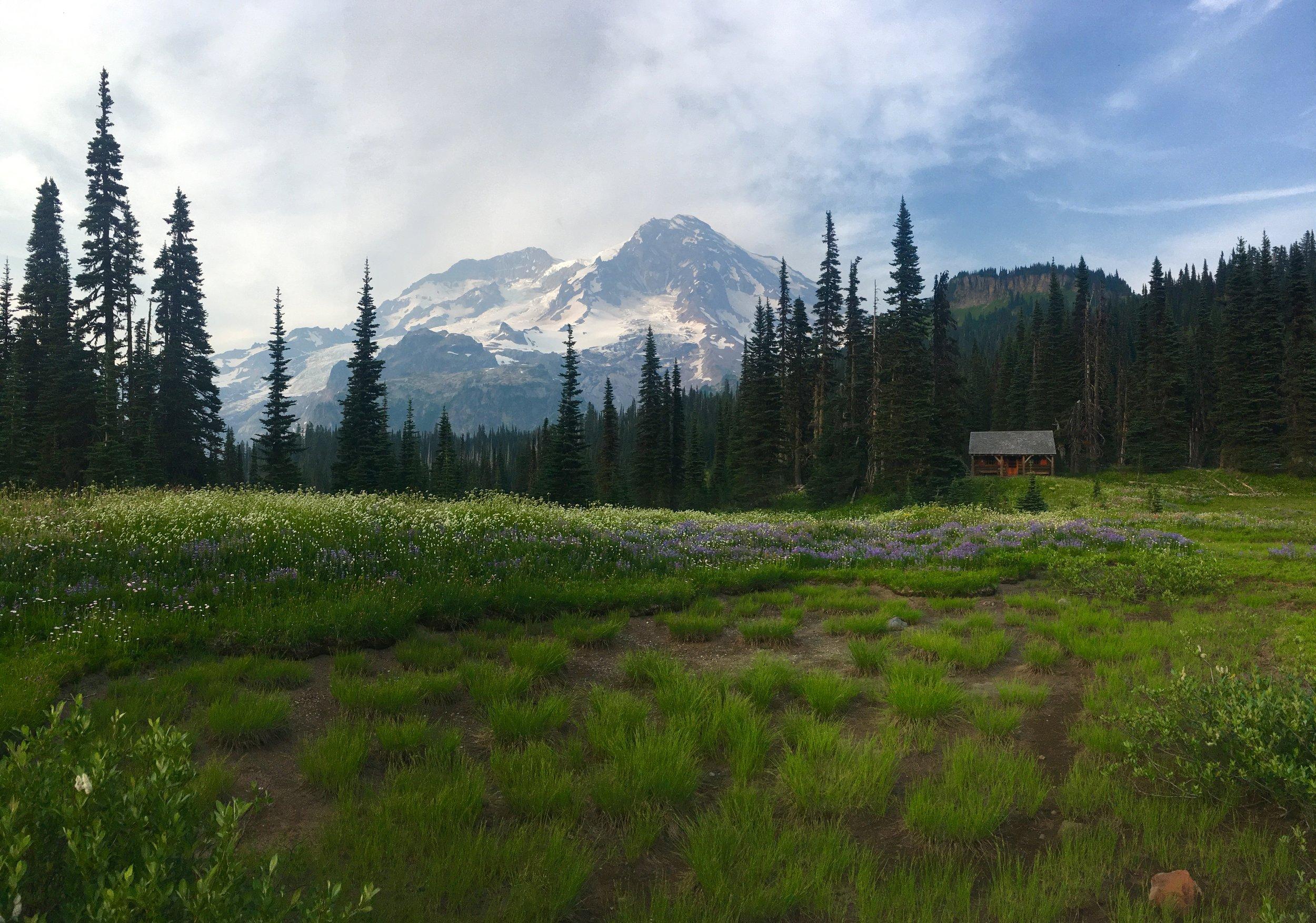 Indian Henry's Campground, Mt Rainier