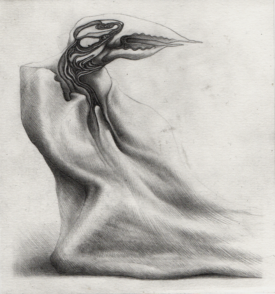 Bird In A Cloak