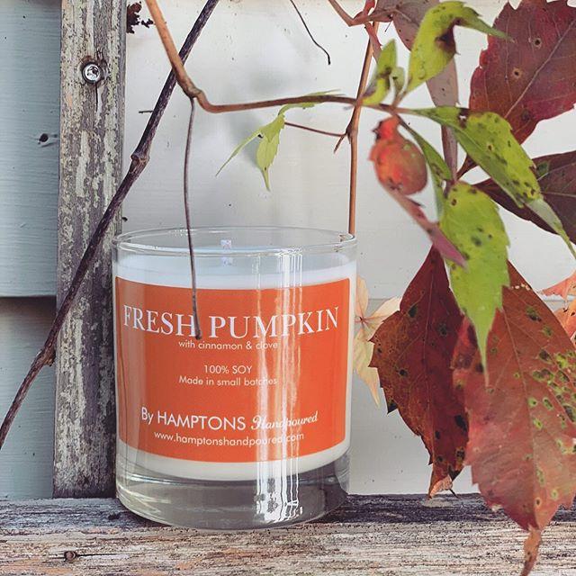 Rainy Long Island days made a little better with a hint of Pumpkin 🧡  #FreshPumpkin in her natural habitat 📸: @classicallycait