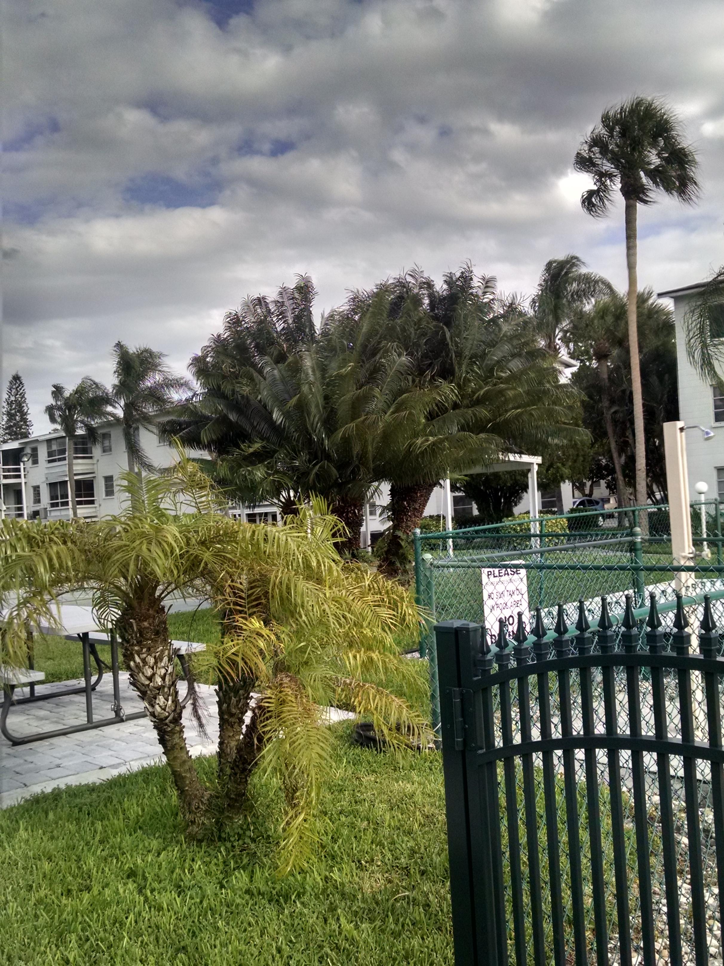 condo courtyard (1).jpg