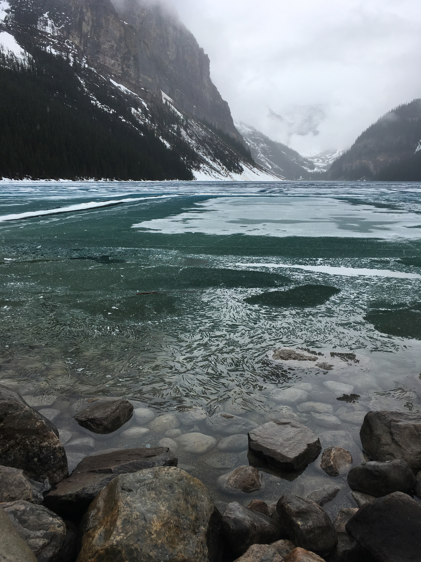 I've seen Lake Louise covered with snow but I had never seen half frozen which was pretty cool.