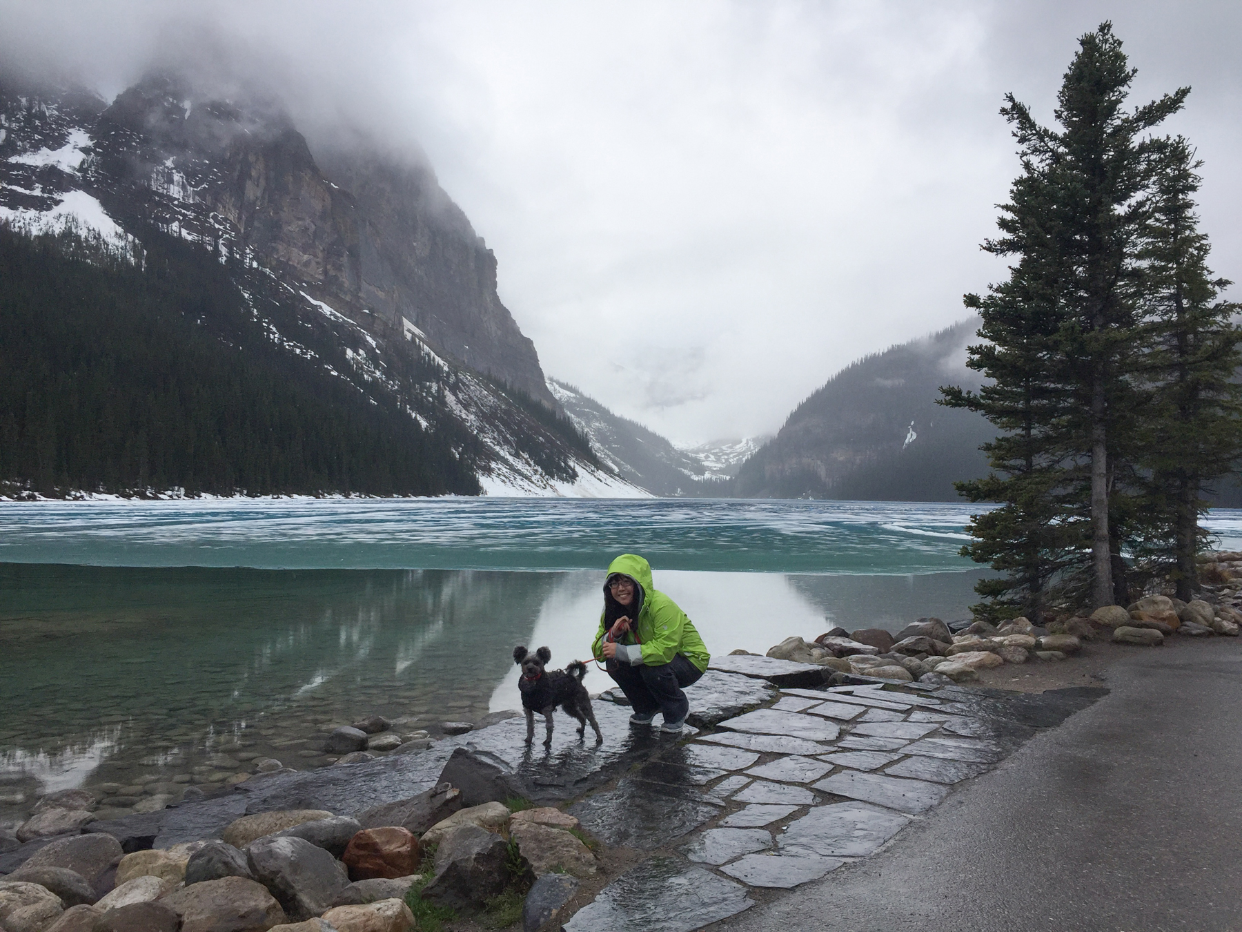 Because of raining, we decided to go visit Lake Louise instead of somewhere new. I've seen Lake Louise covered with snow but I had never seen half frozen which was pretty cool.