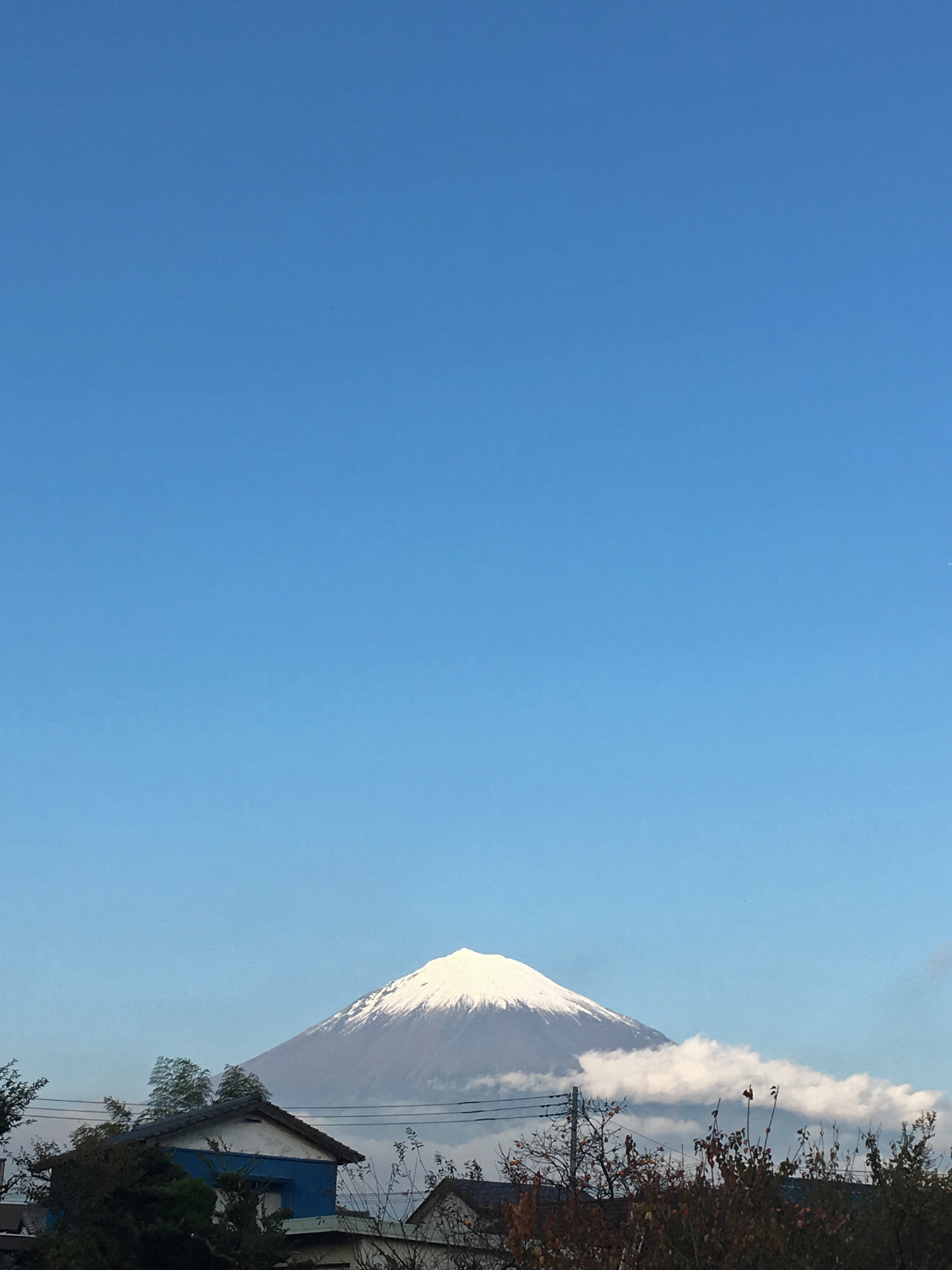 One and only, Mt. Fuji