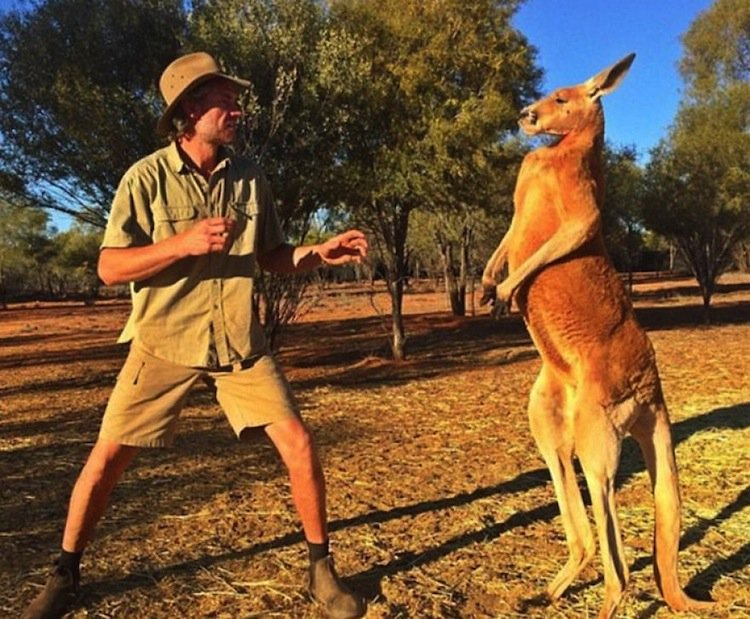 kangaroo-man.jpg