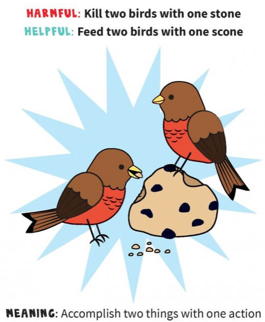Two Birds One Scone.png