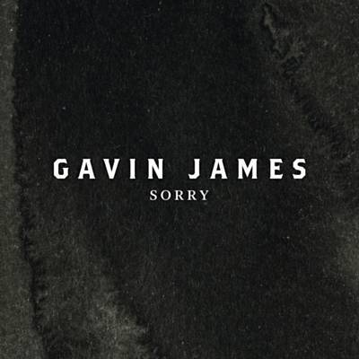 Sorry - Gavin James - I could listen to Gavin James' voice all day. He is so talented and this cover is a fabulous take on Bieber's hit.