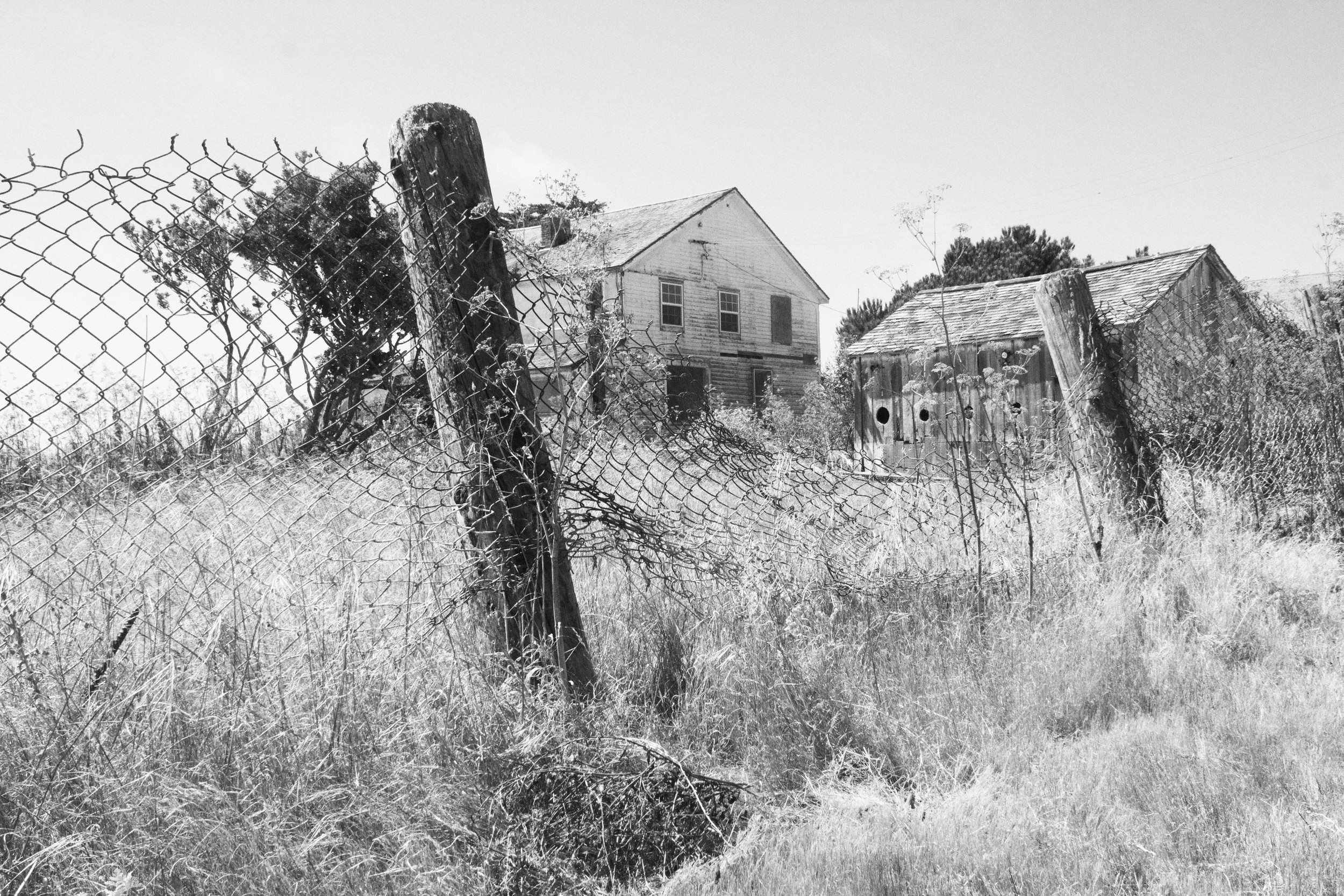 farm at Point Reyes National Seashore, August 2016