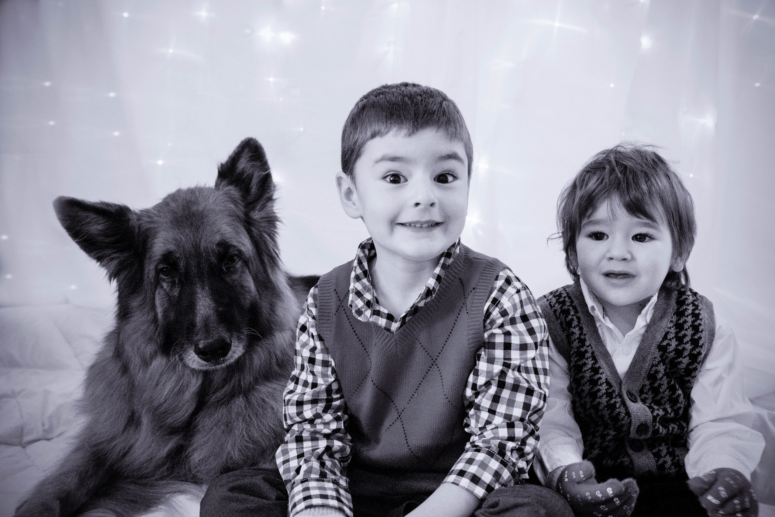 An outtake of my boys with our German Shepherd posing for the Christmas Card photo. Only photographer's kids give these looks - www.lisavillellaphotography.com