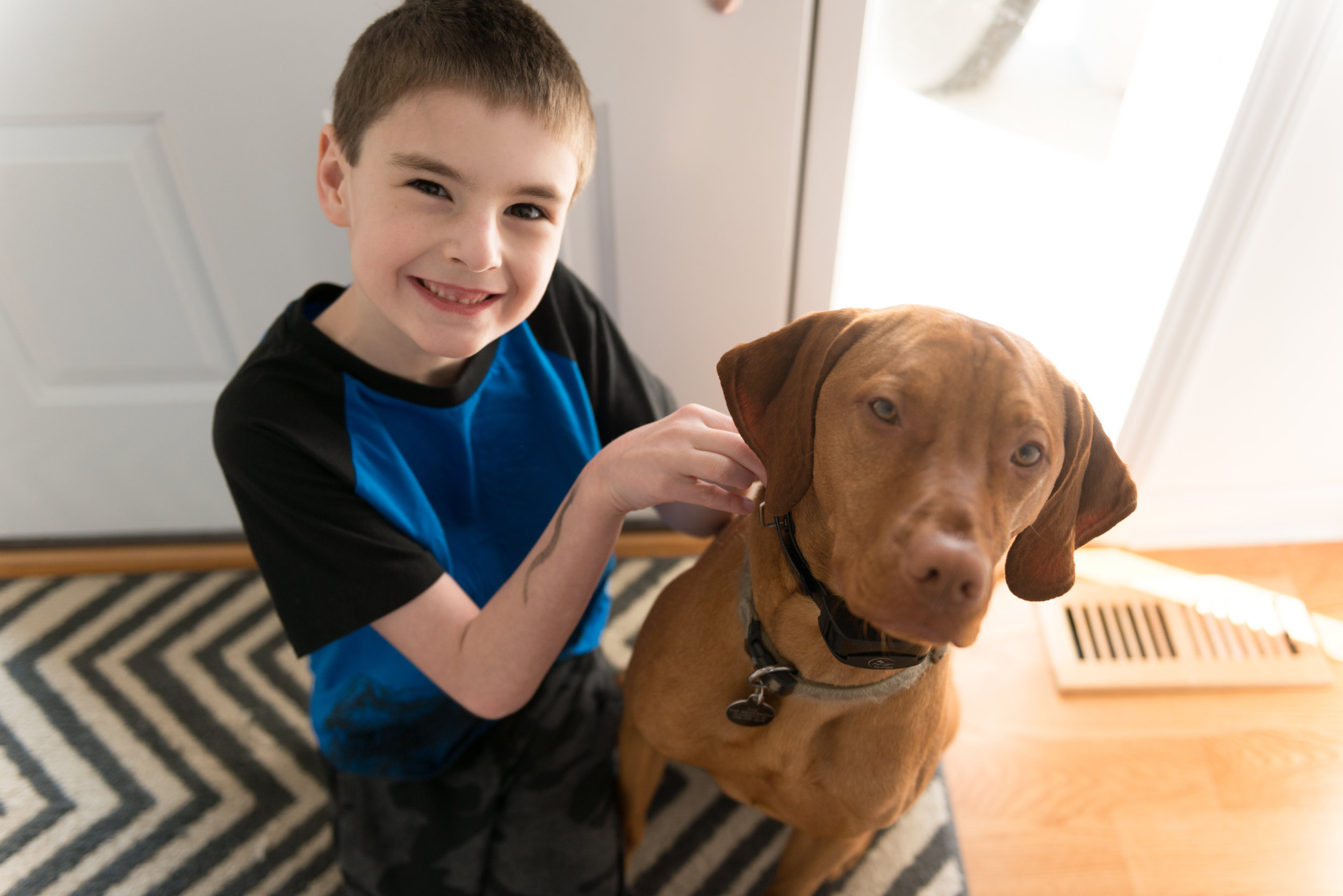 boy_dog_puppy_vizsla_portrait_lisa-Villella-photography-blog