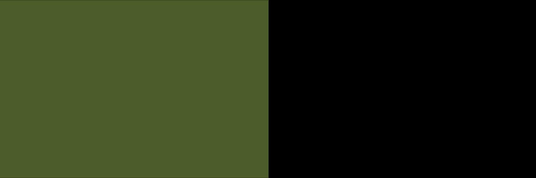 oliveblack.jpg