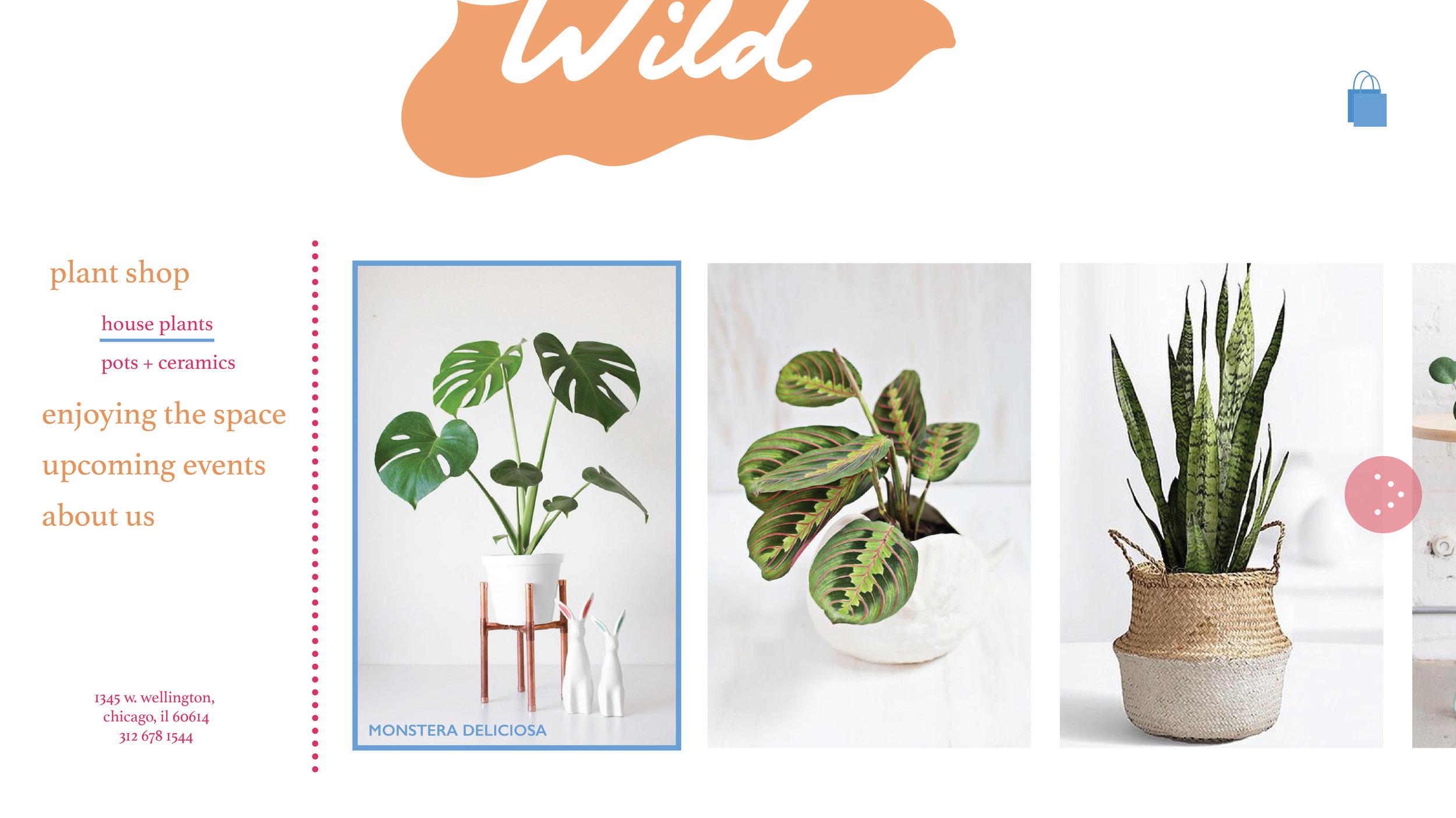 wild_site-03.jpg