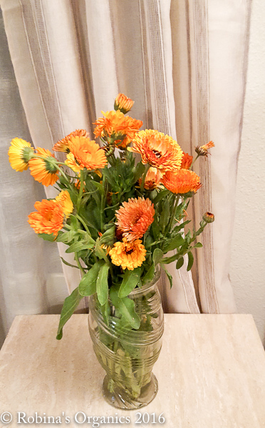 Farm Flowers.jpg