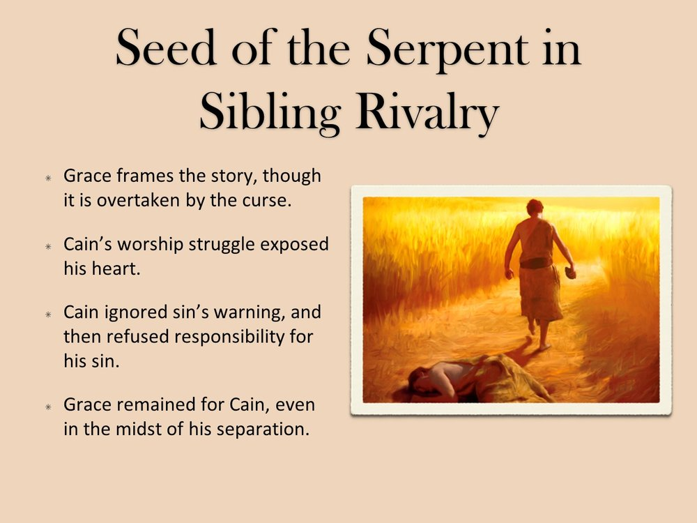 The Two Seeds Sermon Player - Cardinal Drive Church Of