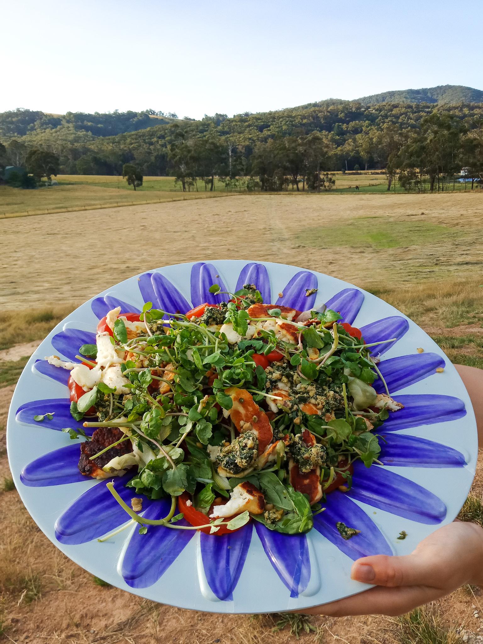 halloumi salad melbourne healthy recipe