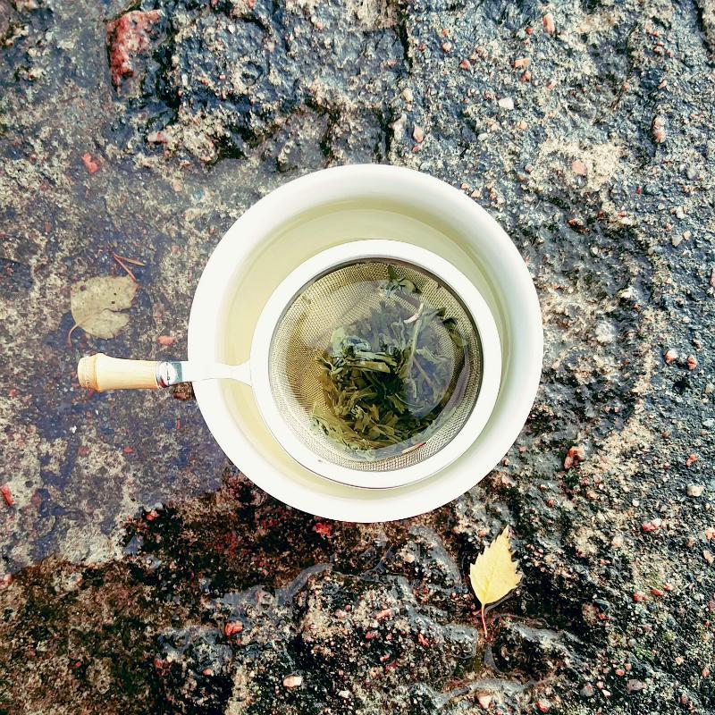 tea strainer.jpg