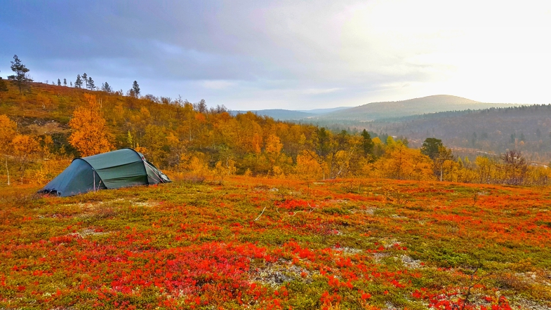 Lapland in fall colors