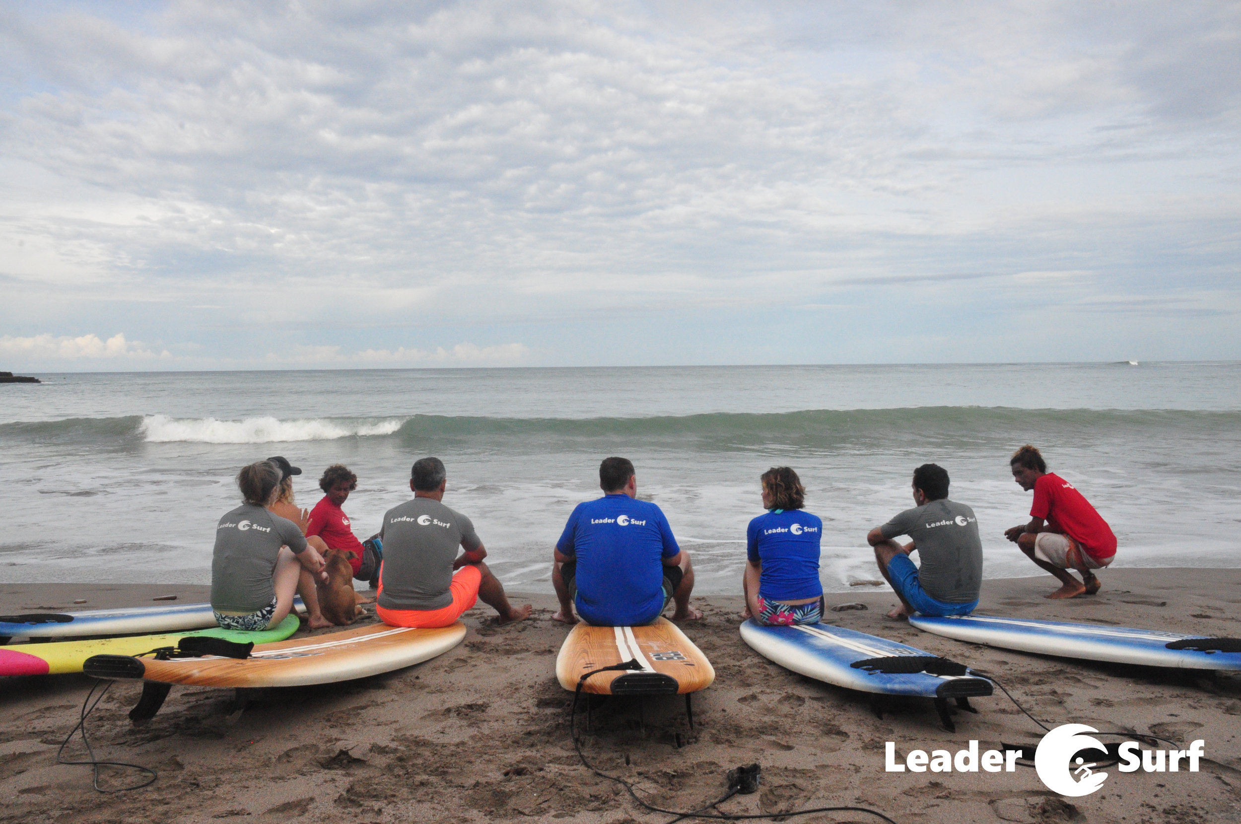 LeaderSurf Surfing Lesson Boards.JPG