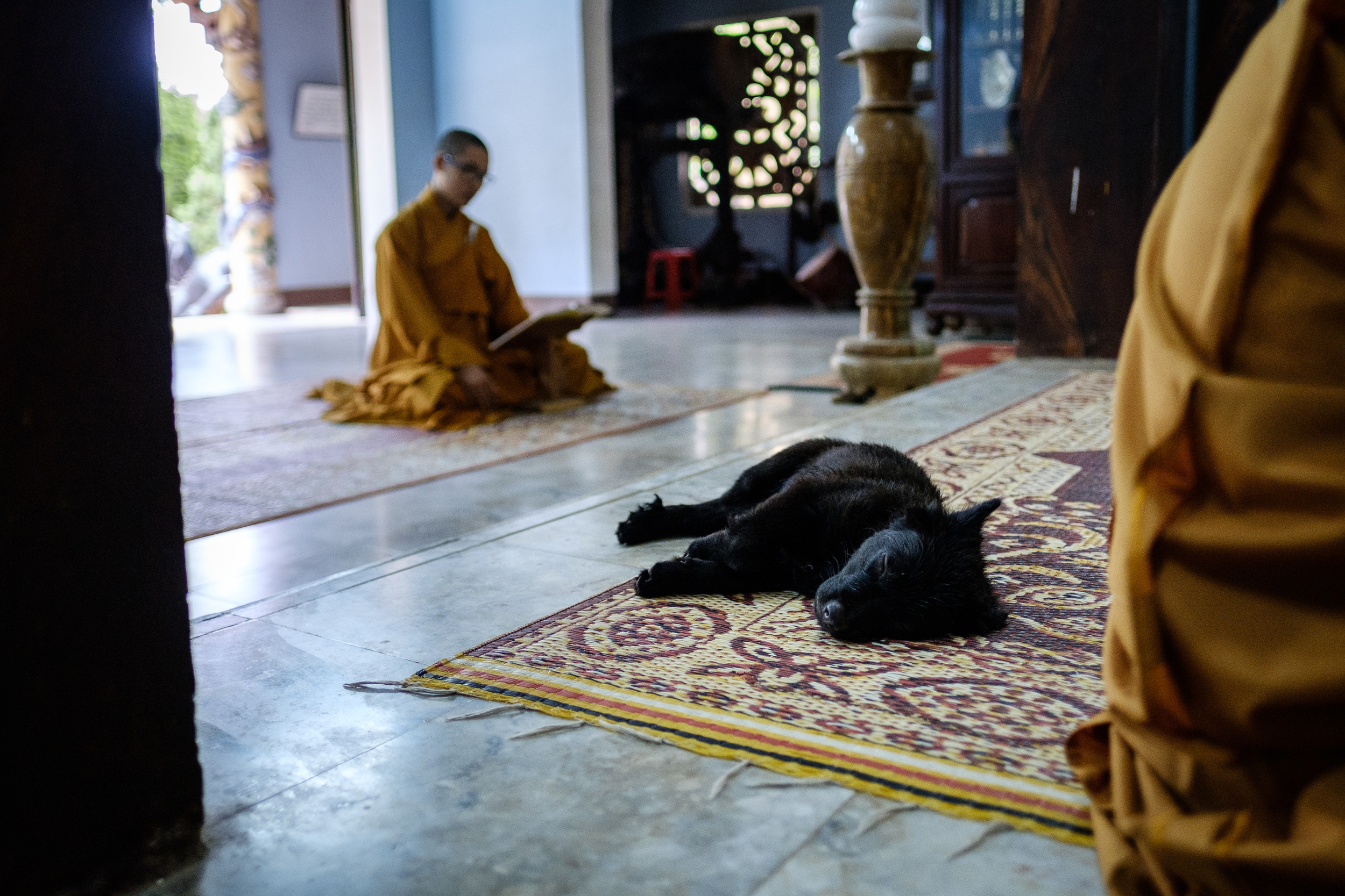 Taking a nap in one of the first temples one reaches.