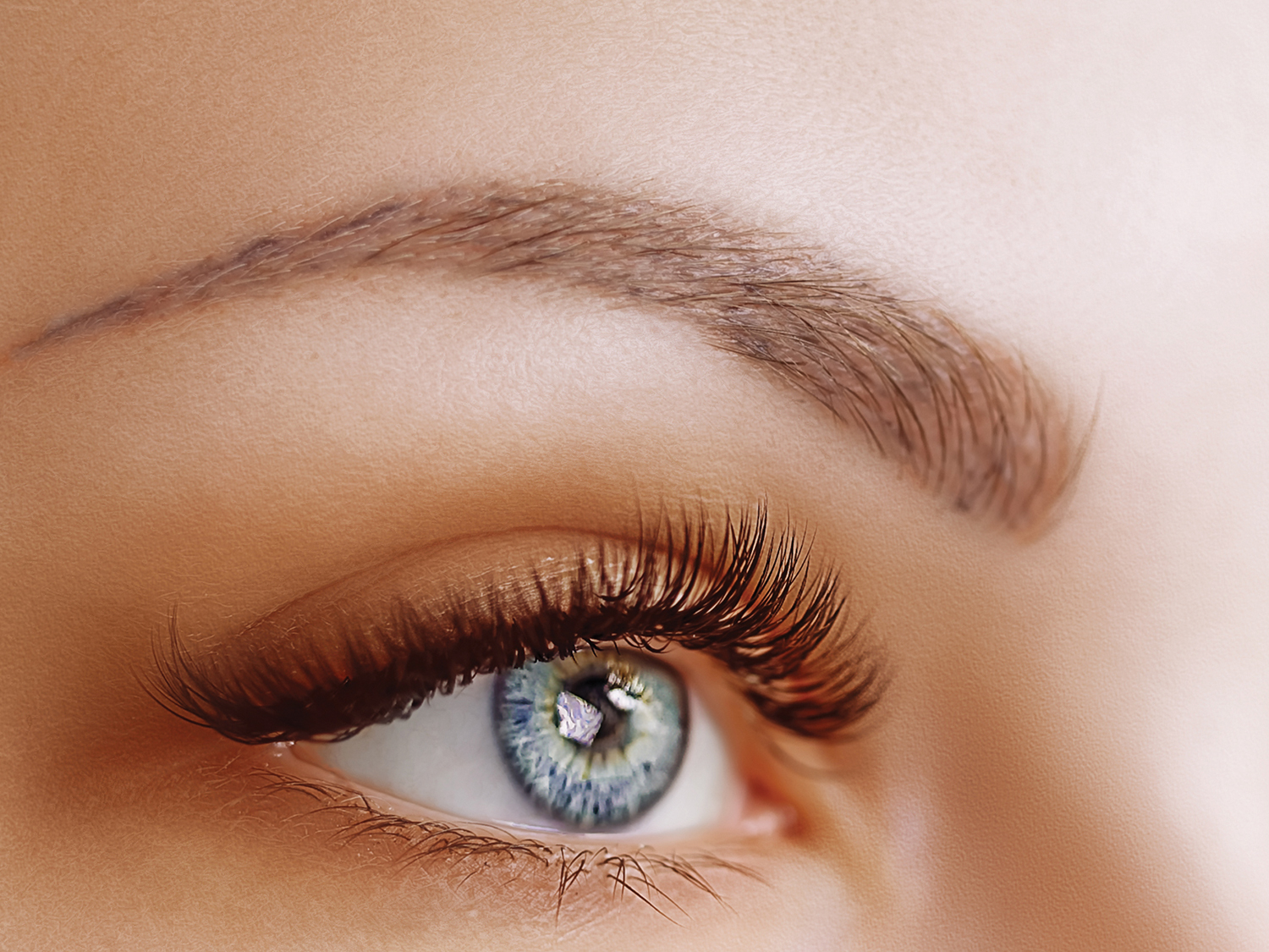 Get Dark, Beautifully-Shaped Eyebrows