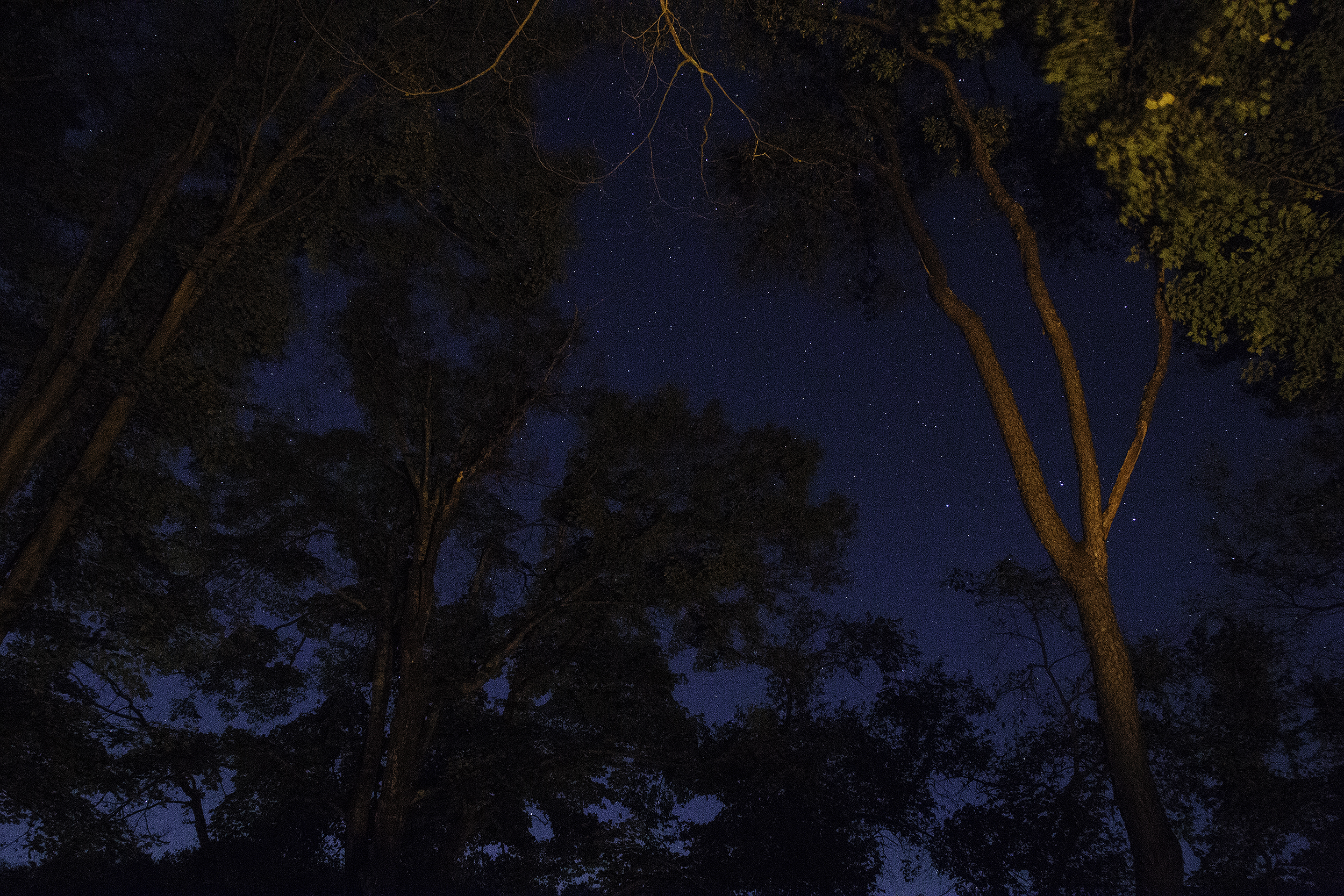night sky2.jpg