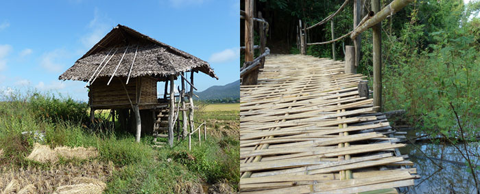 Bamboo hut, on a forested permaculture farm became home during a much savoured slow time