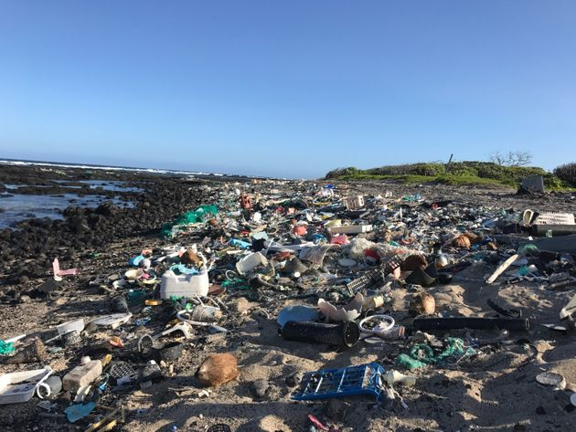 The Hawaii Wildlife Fund organizes regular cleanups at Kamilo Point on Hawaii's Big Island. Photo courtesy: Megan Lamson.