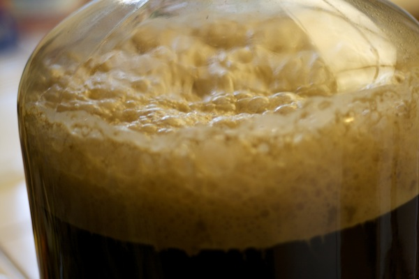 top fermented yeast