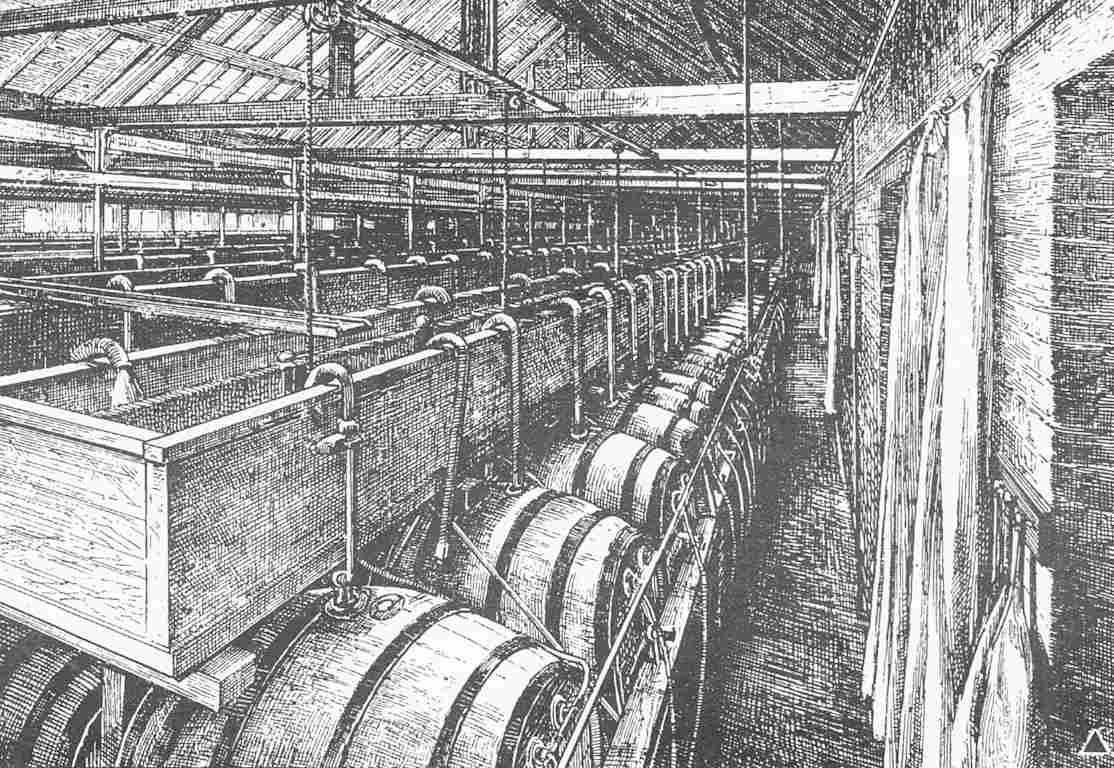 Fıçıların tepesinden kanallara doğru sarkan borular fıçılar arası transfer için kullanılmaktadır