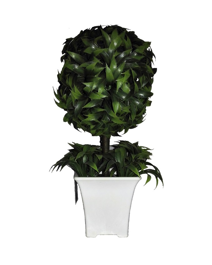 NEW    VANA PLANT IN WHITE PLASTIC POT - 25CM   N5,000