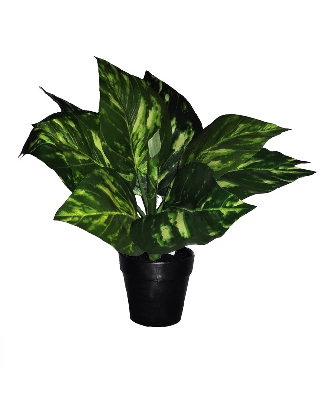 NEW    MYKOS POTTED PLANT - 30CM   N3,200