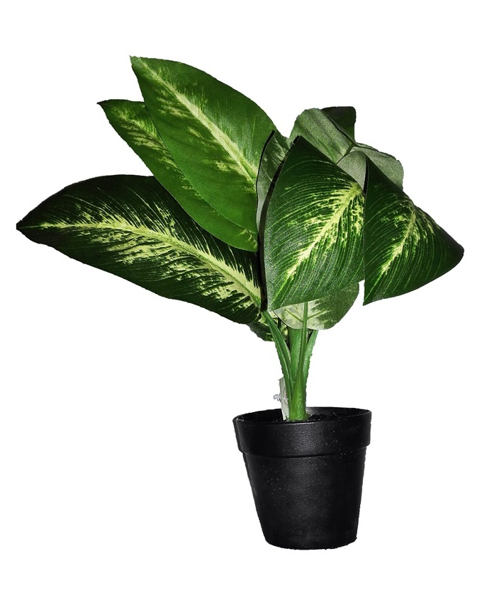 NEW    MYKOS E2 POTTED PLANT   N3,200