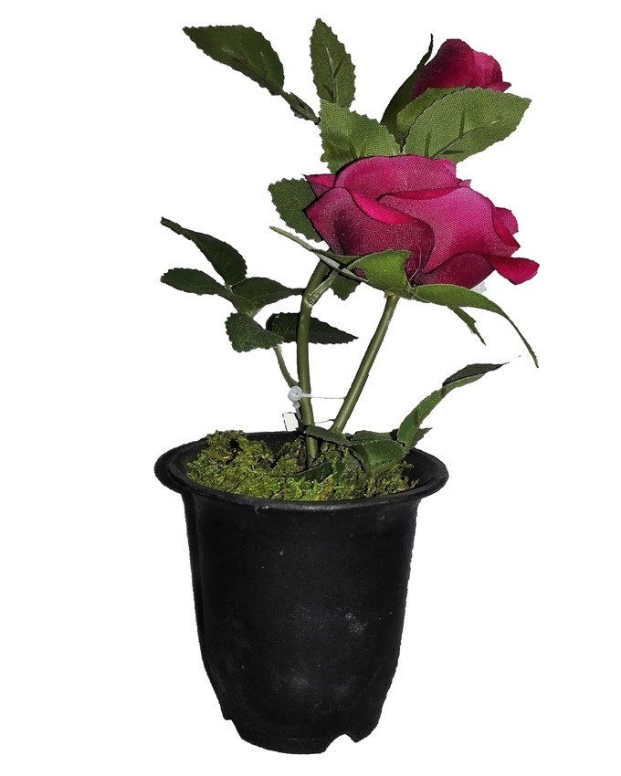 NEW    VELVET ROSE IN SMALL PLASTIC WITH GREEN LEAF DETAIL 22CM - RED   N2,500