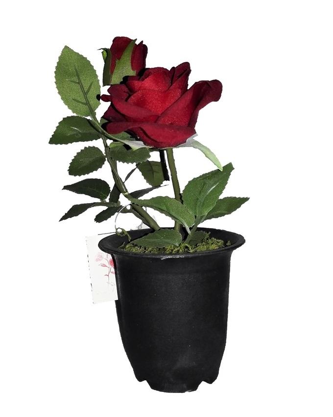 NEW    VELVET ROSE IN SMALL PLASTIC WITH GREEN LEAF DETAIL 22CM - SCARLET RED   N2,500