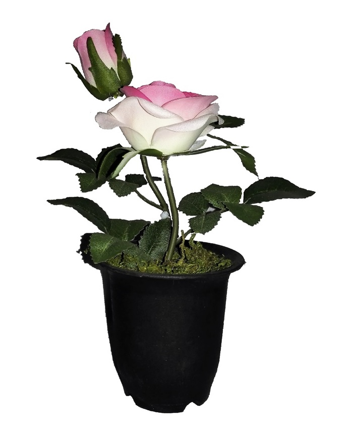 NEW    VELVET ROSE IN SMALL PLASTIC WITH GREEN LEAF DETAIL 22CM - DUSTY PINK   N2,500