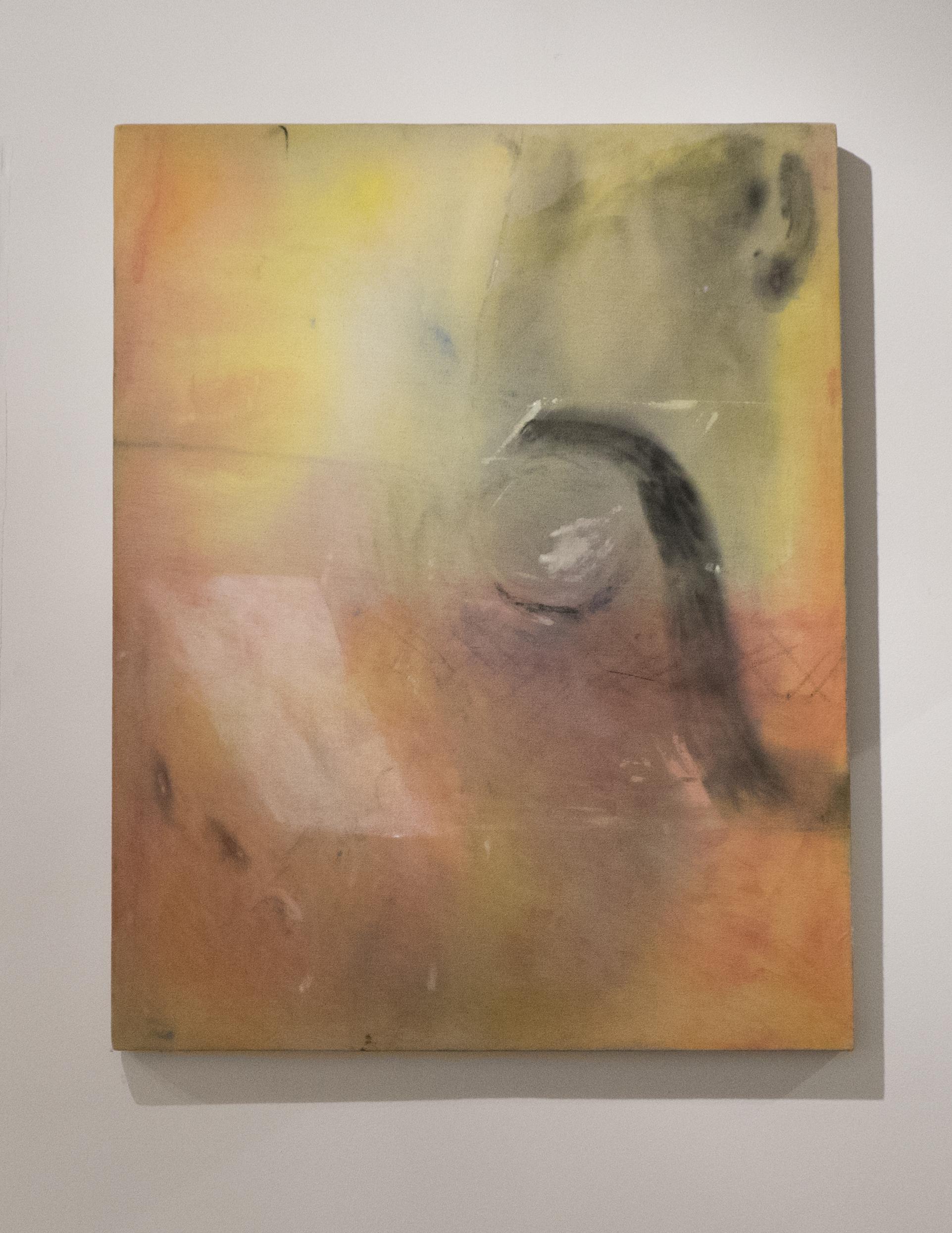 Hose Painting (Mother Tongue)     watercolour, gouache, graphite, charcoal, canvas    2015
