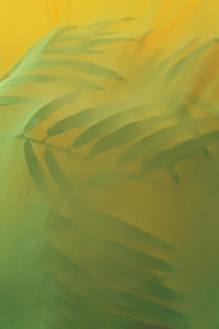 Tropicalia   archival print  2014