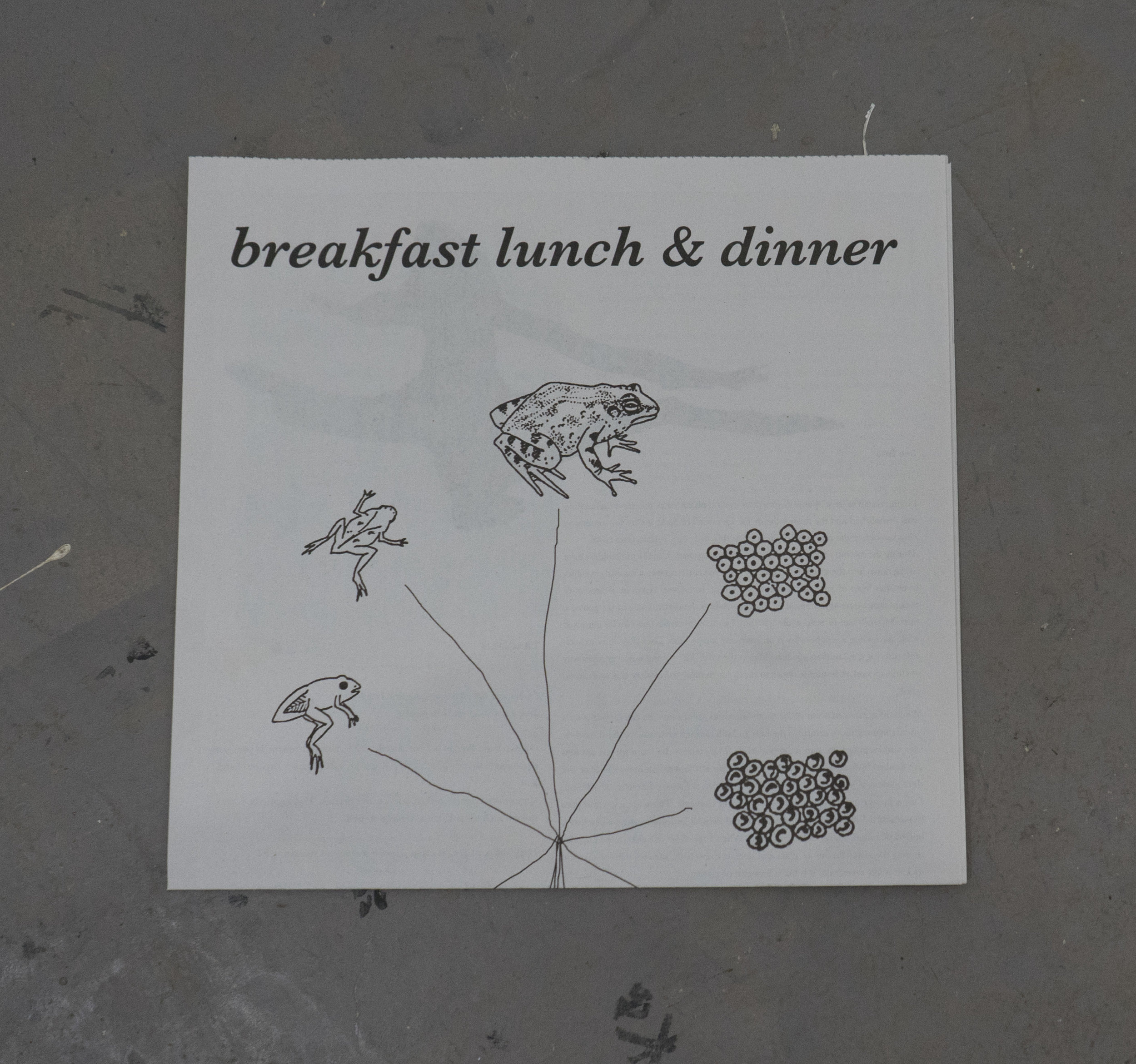 Breakfast,Lunch,& Dinner   with writings from  Mika Agari , David Anderson , Jessica Clay , David King, Zack Rafuls & Christian Vistan