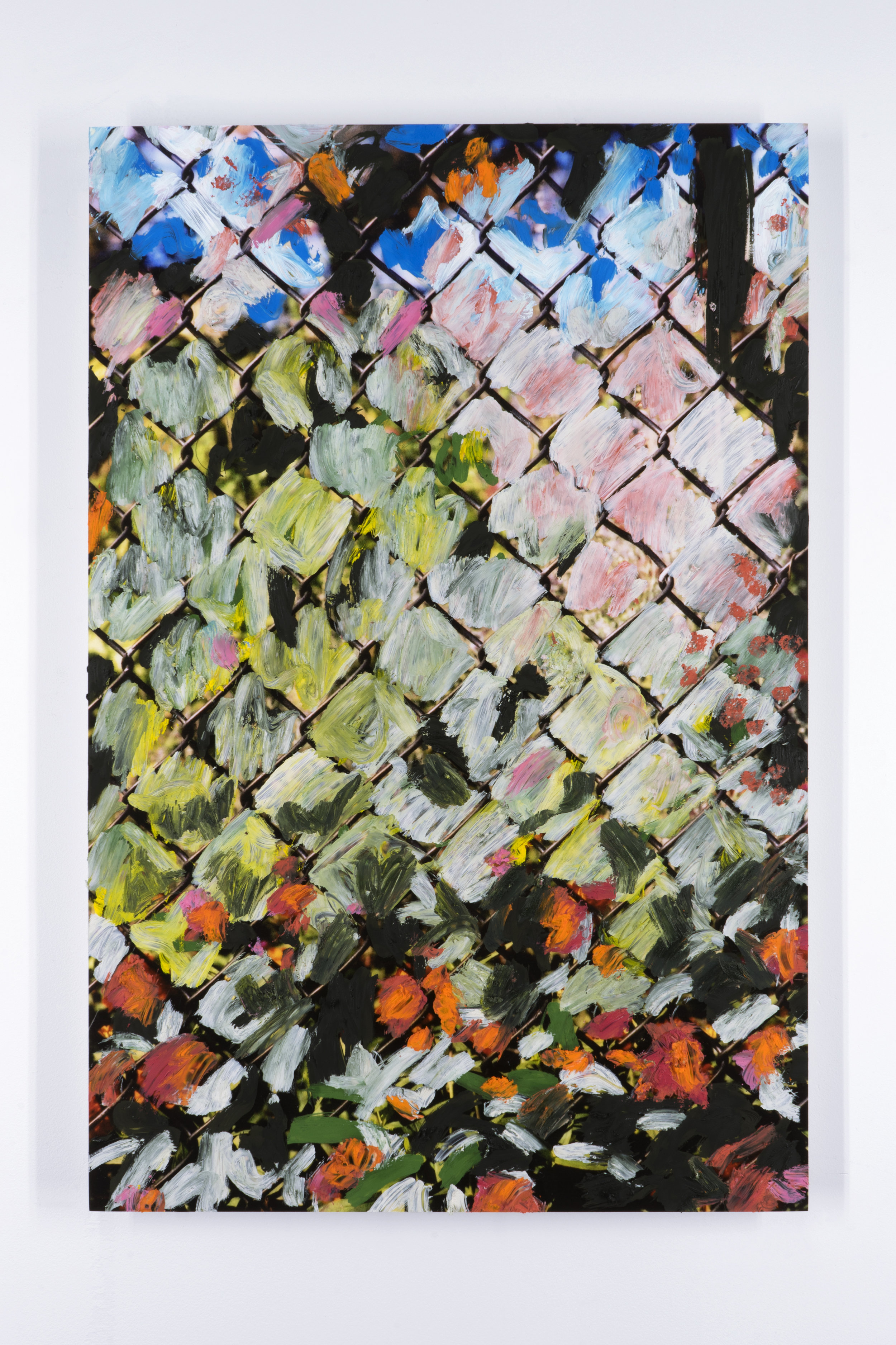 Untitled (Fence 1)   Oil paint on mounted inkjet print  2017
