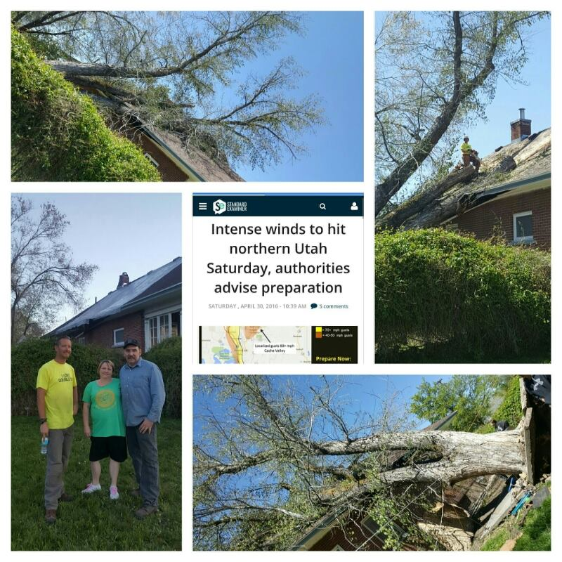 """""""Totally awesome company. They did a great job at a great price. I highly recommend them. They responded urgently after a storm and took care of us before others even returned our calls."""""""