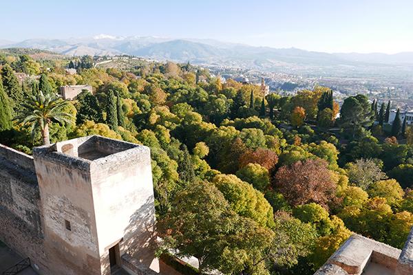 Alhambra_244.jpg