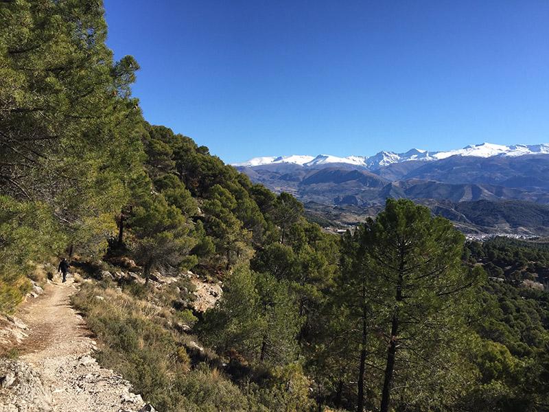Snow on the Sierra Nevada seen from the Sierra Huetor National park.