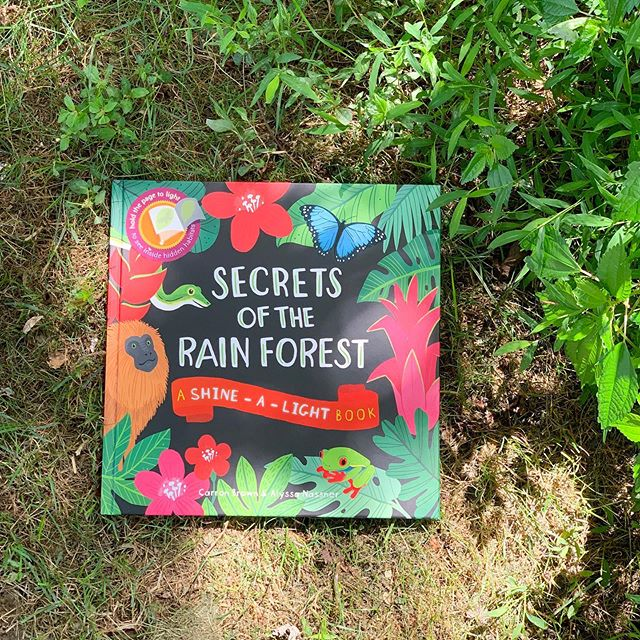 This week is all about the 🌱 RAINFOREST 🌱 This is our favorite rainforest book but you can see a big list of awesome rainforest-themed books for toddlers and preschoolers on the Books at Play blog!
